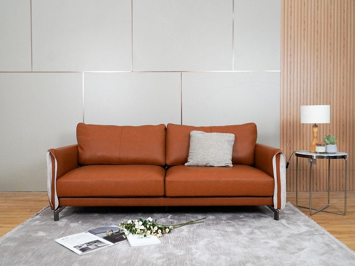 khai-niem-ve-sofa-2-cho